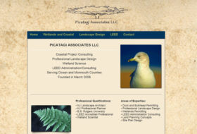 Web Design- Picatagi Associates